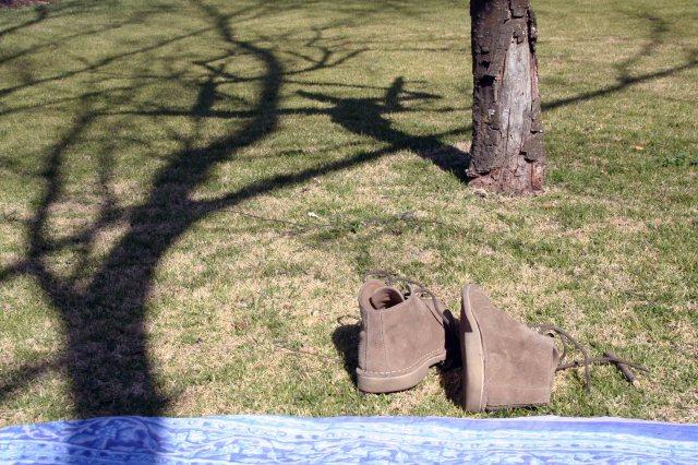 velskoen & shadow