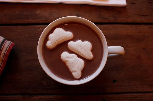 cocoa from nikole herriott