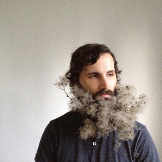 fluff beard