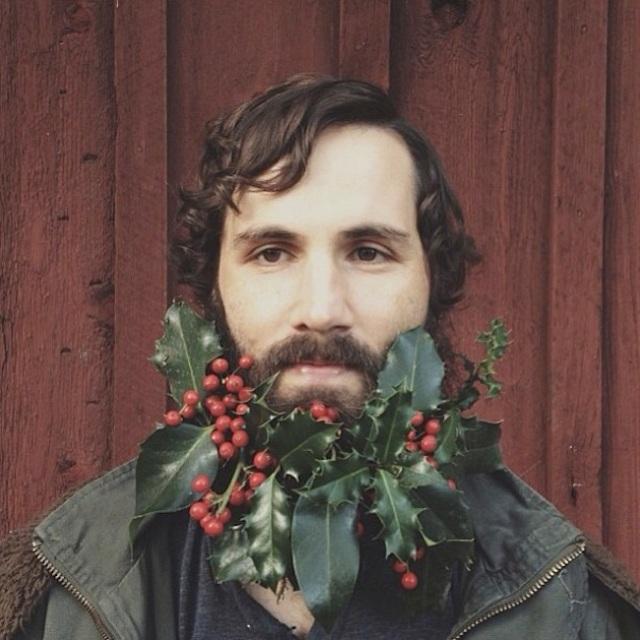 holly beard