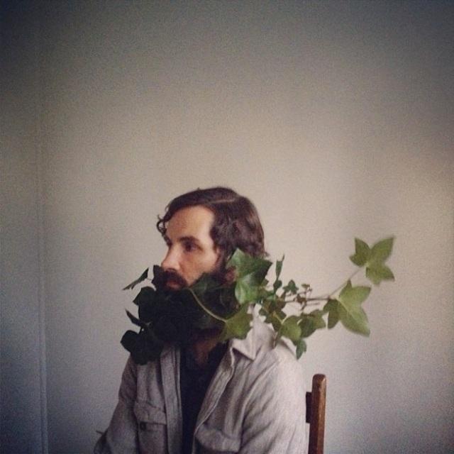 ivy beard