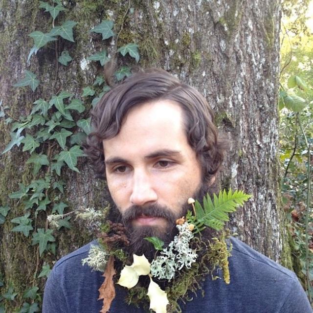 lichen beard