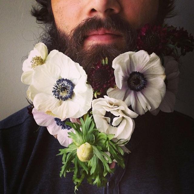 poppy beard
