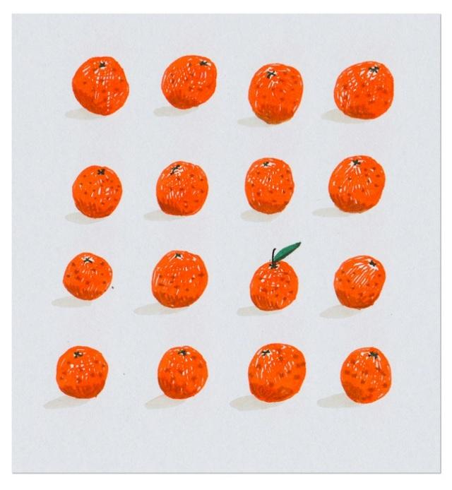 16-oranges