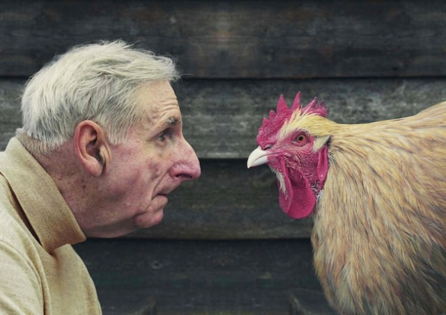 David_Stewart_Hugh_and_chicken_in_profile
