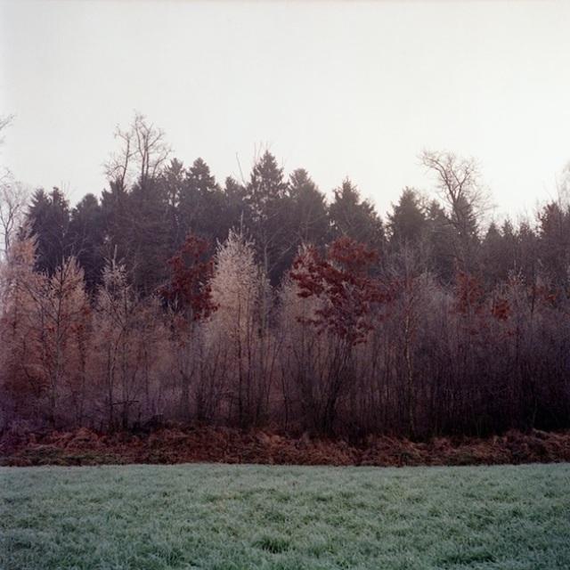 Florian_Reischauer10