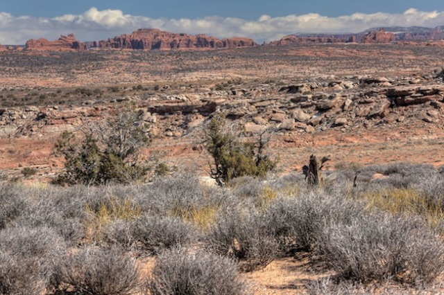 Gallery-moab-site-2-720x480