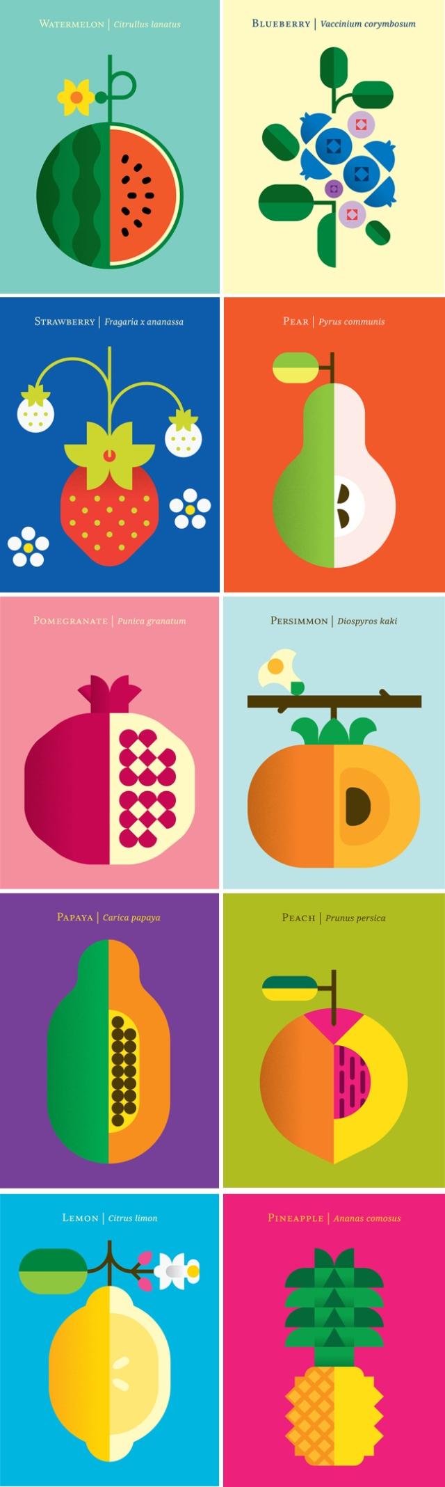 fruit_christopher dina