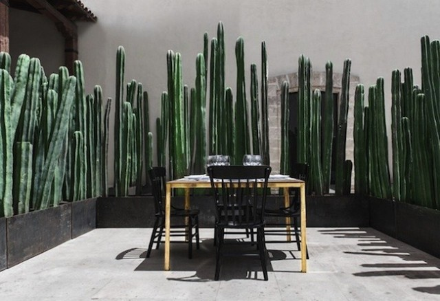 Montero-Terrace-Gardenista